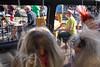 IMG_0123 (Ville.fi) Tags: raahe rantajatsit rajatsi jazz ruiskuhuone festival beach lauantai2016 mikko innanen 10 mikkoinnanen alttojabaritonisaksofonipaulilyytinen tenorijasopranosaksofonijussikannaste tenorisaksofoniverneripohjola trumpettimagnusbrooswe trumpettijarihongisto pasuunamarkuslarjomaa pasuunaseppokantonen pianovilleherrala kontrabassoeerotikkanen kontrabassojoonasriippa rummutmikakallio rummut