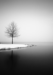 A Dream within a Dream (hiromichiendo) Tags: longexposure blackandwhite bw lake abstract tree art nature water monochrome japan landscape still fineart silence zen nd minimalism tranquil