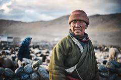 DSC00383 christophecarlier m (christophe carlier) Tags: nomad portrait changtang ladakh himalayan himalaya tibet bouddhism buddhism sheeper pashmina sony a7 zuikoom50mmf18 zuikoom24mmf28 olympus bokeh