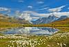 Summer's morning time near the Schwarzsee. Zermatt. No. 9385. (Izakigur) Tags: swiss dieschweiz svizzera switzerland reflection nikond700 nikkor2470f28 suisia suïssa izakigur feel fixyou coldplay topf25 topf400 acqua eau wasser מים ماء