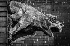 Gargoyle from chatedral in Osijek #3 (v.Haramustek) Tags: gargoyle osijek cathedral curch statue sculpture bw evil guarding monster stone art zoom arhitecture kreative scaring blackandwhite monochrome texture surreal croatia slavonija