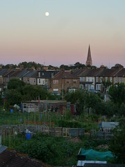 Honeybone Allotments, Walthmstow (Richard and Gill) Tags: moon london church spire e17 walthamstow walthamforest allotments stsaviours honeyboneallotments