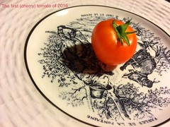 #1 (Renee Rendler-Kaplan) Tags: shadow red kitchen fruit garden cherry one 1 backyard mine dish july special served wbez iphone cherrytomato chicagoist 2016 plated chicagoreader thefirst iphoneography reneerendlerkaplan therestarequitegreen mymothersdessertplates oryoucancallitavegetableidontmind