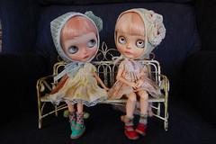DSC_0017 (Lindy Dolldreams) Tags: blythedoll dolls girls petitbonbon daffnerycustomdolls sandraefigenio