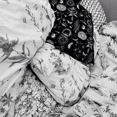 More photography #moandlin #youandme #minimal #minimalism #blackandwhite #simple #moandlin #nature #contrast #shadow #texture #slowlife #slowmedown #walkingaroundtown #art #artist #artistlife #inspiration #shadow #comeintomyworld #followme (laetitialudewig) Tags: moandlin youandme minimal minimalism blackandwhite simple nature contrast shadow texture slowlife slowmedown walkingaroundtown art artist artistlife inspiration comeintomyworld followme
