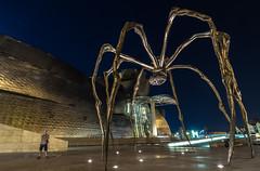 Bueno...cenamos o qu? (noctuafoto) Tags: night noche nocturna urban bilbao longexposure largaexposicin angular tokina araa spider guggenheim