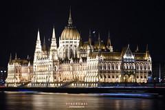 Palacio del Parlamento - Budapest (Stauromel) Tags: budapest parlamento palaciodelparlamento danubio duna light nocturna canon1dmarkii stauromel skyline arquitectura alquimiadigital melilla hungria