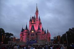 Castelo da Cinderela (dr_dorninger1) Tags: disney da castelo magickingdom cinderela castleofcinderella dorninger castelodacinderela faustocarlosdorninger