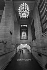 Si salto toco el techo - Grand Central Terminal - Manhattan - New York (www.capturaviaje.com) Tags: nyc newyork byn blancoynegro canon manhattan wb grandcentralstation grandcentral gct grandcentralterminal estadosunidos nuevayork grimaldi whiteandblack eeuu estacincentral ef1740mmf4lusm 5dmarkiii dgrimaldi 5dmiii davidgrimaldi