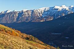 Dolomiti di Brenta - parte settentrionale (Davide Podetti) Tags: val di sole