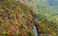 Nantahala National Forest Fall Colors (Concert_Photos_Magazine) Tags: autumn trees usa mountain mountains leaves forest nc realestate unitedstates fallcolors property northcarolina aerial cliffs autumncolors nationalforest granite land aerialphoto cashiers blueridgemountains countryroad wnc nantahalanationalforest westernnorthcarolina transylvaniacounty panthertownvalley 11902487142