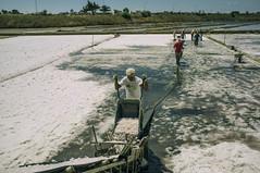 salt pans of Trapani, Sicily. (Paolo Ilardi) Tags: summer sun art work artistic traditional salt sicily fujifilm saline trapani saltpans x100 project365 paoloilardiphotography