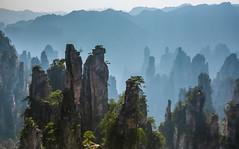 Back from Pandora ! (Zhāngjiājiè - China) (lucien_photography) Tags: china travel shadow panorama mountains canon landscape holidays shadows avatar unesco pandora soe hunan worldheritage zhangjiajie travelphotography markiii wulingyuan abigfave pwlandscape zhangjiajienationalforestpark zhāngjiājiè canon5dmarkiii 5dmarkiii wulingyuanscenicarea