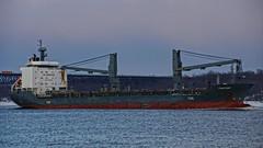 Cargo Ship Fortune (thetrick113) Tags: winter ice frozen ship fortune hudsonriver hdr bulkcarrier hudsonvalley cargoship hudsonhighlands hudsonriverice newburghnewyork workingvessel sonyslta65v hudsonrivership winter2015 cargoshipfortune