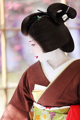 Geiko Lady (Teruhide Tomori) Tags: portrait woman girl beauty festival japan lady kyoto maiko   kimono tradition   kitanotenmangu baikasai ef70200mmf28l    canoneos5dmark