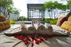 Alila Villas Uluwatu Day Three () Tags: bali breakfast swimmingpool villa uluwatu alilavillas baliluxuryvillas alilahotels alilauluwatu onebedroompoolvillas