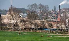 Paysage de la valle de Katmandou (jfgornet) Tags: champs paysage chemine fume valle paysans mg3108
