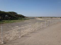 Kenia. Loyangalani. La pista del aeropuerto local (escandio) Tags: kenia 2014 loyangalani viajealturkana