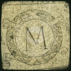 MONTANA-299