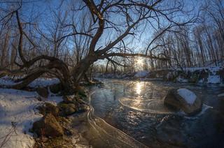Progression de l'hiver 1, 2014-12-30