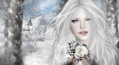 L Tg    (AyE  g  T ) Tags: winter portrait white snow snowflakes artwork frost friendship princess digitalart dreaming fairy fantasy romantic invierno sweetness emotions inverno fable faires pegaso fantasyart