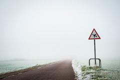 Interdit de vol (patoche21) Tags: road winter mist france fog landscape nikon frost 21 burgundy hiver route paysage bourgogne brouillard panneau lightroom gelée 2470mm côtedor d700 ouges lr5 patrickbouchenard