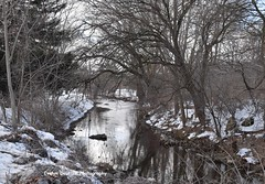 DSC_6491_edited-3 (Evelyn Deutsch Photography) Tags: trees nature landscape creeksandrivers watercreeksrivers