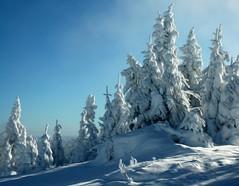 Winter blues ... (MalgosiaK) Tags: monttremblant2012