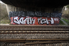 RIP Joak / RIP Fish (Alex Ellison) Tags: urban fish graffiti boobs rip railway sone line chrome graff bam trackside joak neka pws northwestlondon sad1 1t nekah neks paintwasters