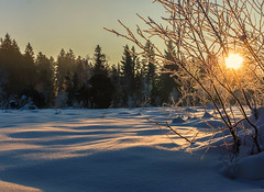 Golden Slumbers (*Capture the Moment*) Tags: schnee winter mist lake snow sunrise frost sonnenaufgang wetter dunst kirchsee