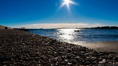 Foreground (SomethingNature) Tags: ocean sun shells beach nature water norway norge spring skies sunny february tønsberg skjell ringshaugstranda ringshaug
