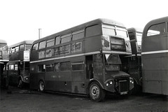 RCL2228 at Radlett (aecsouthall) Tags: parkroyal radlettaerodrome aecroutemaster londoncountrybusservices lcbs cuv228c