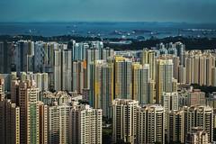 High Life (elenaleong) Tags: singapore apartments flats publichousing urbanisation highrisebuildings citydwellers elenaleong singaporehomes
