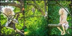 Summertime 08 (toriasoll) Tags: doll dolls bjd abjd balljointeddolls balljointeddoll asianballjointeddoll asianballjointeddolls dollphotography dollphoto dim dimlarina larina dollinmind