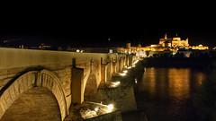 _DSC3687 pano (jsanchezq65) Tags: city bridge night river puente andaluca spain cityscape nightlights nightscape panoramica cordoba nocturna andalusia nocturnas crdoba urbanscape puenteromano paisajeurbano nightcity rioguadalquivir