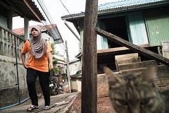 * (Sakulchai Sikitikul) Tags: street snap streetphotography songkhla sony voigtlander 28mm thailand cat islamic muslim