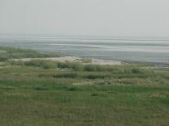 Campen Krummhrn Emsstuar (achatphoenix) Tags: ems eau eastfrisia niederlande netherlands dollart dollartbay dollard waddensea wattenmeer water krummhrn ostfriesland