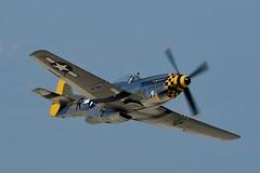 PKG_3411_WB1 (peegee_4) Tags: warbird babyduck mustang p51 airventure oshkosh eaa