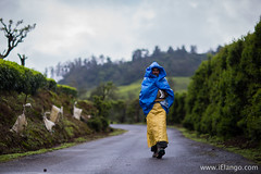 To work | Monsoon 2016 | Ooty (elango1992) Tags: 8thmile elangovansubramanianphotography commercialweddingphotography contactielangocom elango ielango july2016 monsoon ooty portraits rain street wedding weddingphotography wwwielangocom