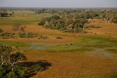 View From Above III (www.mattprior.co.uk) Tags: adventure adventurer journey explore experience expedition safari africa southafrica botswana zimbabwe zambia overland nature animals lion crocodile zebra buffalo camp sleep elephant giraffe leopard sunrise sunset
