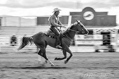 Horse and Rider (d allen johnson photograpy) Tags: newmexico santafe rodeo nmgra gay association zia event horse rider polebending outdoor arena black white bw nikon d810 70200mm race timed horseriding horserider equine equestrian man male animal sport sports riding blackandwhite monochrome gallop trot galloping mane tail bit bridle saddle pole bending competition