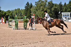 DSC_1087 (2) (ploufjf_64) Tags: paus show jumping chevaux pau 2016