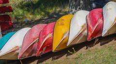 Colourful Canoes (Asif A. Ali) Tags: canon park bog ottawa markii asifalicom asifaali canoneos5dmarkii 70200mm 20x converter lapchelake gatineauparks parcdelagatineau quebec canada photography canoes colourful