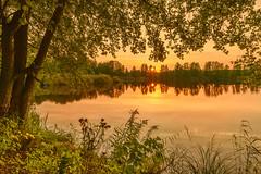Touching Sunbeams (Peter Vestin) Tags: nikondf sigma24mmf14dghsmart siruin3204x siruik30x adobecreativecloudphotography topazlabscompletecollection herrn skattkrr karlstad vrmland sweden nature landscape seascape sunset