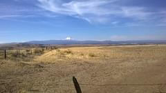 Mt Hood and the fields of Dufur (yarninaround) Tags: mthood dufur