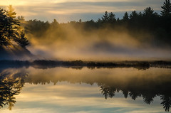 Copper Lake Sunrise (JeffStewartPhotos) Tags: fog foggy morning misty sunrise risingsun bog copperlake kawarthahighlands kawarthahighlandssignaturepark provincialpark park ontario canada