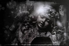 Revelation 9 (enrique_vega_photography) Tags: revelation9 newamericanstandardbible surrealism sinister blackmagic exorcism witchery spellcraft witchcraft darkart uncanny bible apocalypse religiousphotography antiquephotography wetplatecollodion tintype
