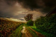 wet walk (radonracer) Tags: rural landschaft landscape herbst autumn boeckelt