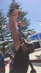 2016.10.10 賈小弟餵海鳥@Labrador  Beach-1 (amydon531) Tags: 澳洲 黃金海岸 gold coast australia trip travel vacation baby boys kids brothers justin jarvis family toddler cute feeding labrador beach seabirds