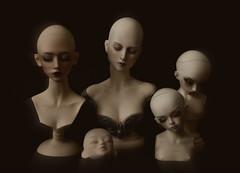 sleeping dolls (dolls of milena) Tags: bjd abjd resin doll elfdoll emma black cherry aishat sio2 torso stand head unoa sist alchemic labo minifee fairyland rheia sleeping mirwen